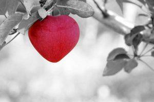 5 languages of love